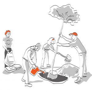 Formación en trabajo en equipo y auto-organización en Barcelona y Viena, Castellano, Inglés, Alemán